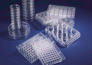 DISPOSABLE LABWARE