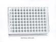 PCR1208 Thumbnail Image